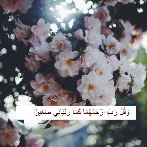 احلى صور مكتوب فيها آيات من القرآن