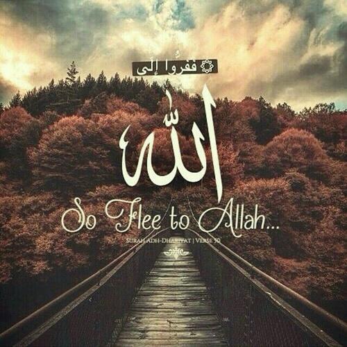 صور اسلامية مكتوب فيها ايات قرآنية معبرة