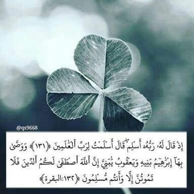 صور اسلامية مكتوب فيها قرآن كريم انستقرام