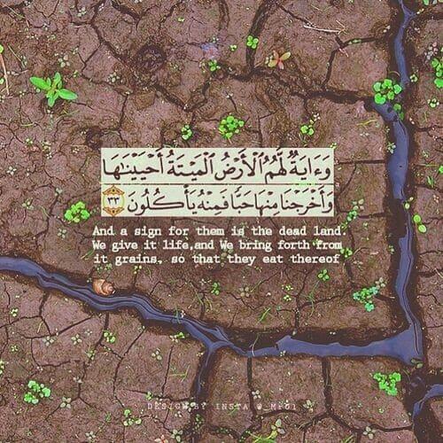 صور اسلامية مكتوب فيها قرآن كريم جميله