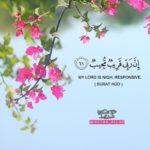 صور روعة مكتوب عليها قرآن كريم حلوة