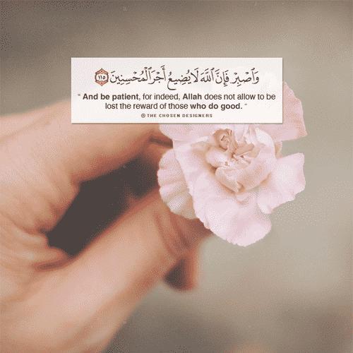 صور منوعة اسلامية مكتوب فيها قرآن كريم