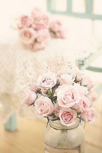 صور اجمل الورود فى العالم رائعة
