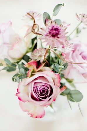 تنزيل صور اجمل الورود فى العالم