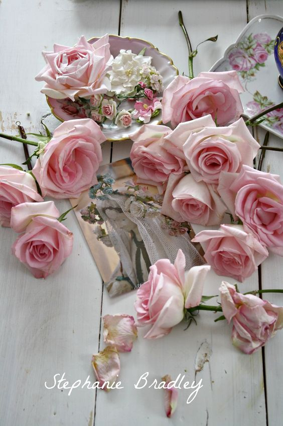 صور عن الورد حلوه