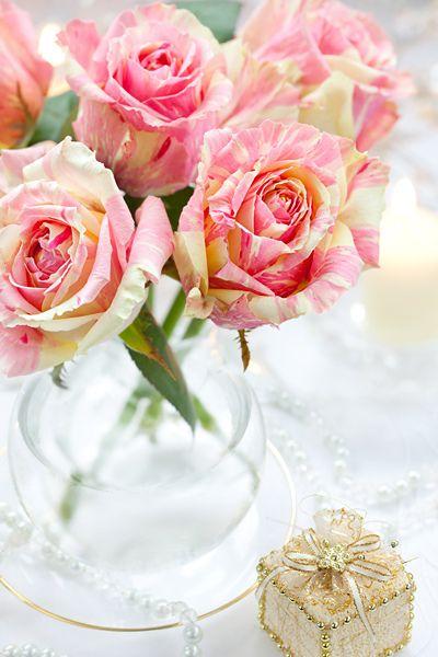 صور جامدة ورد جميل