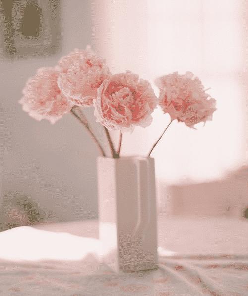 صور ورد رومانسي جميله